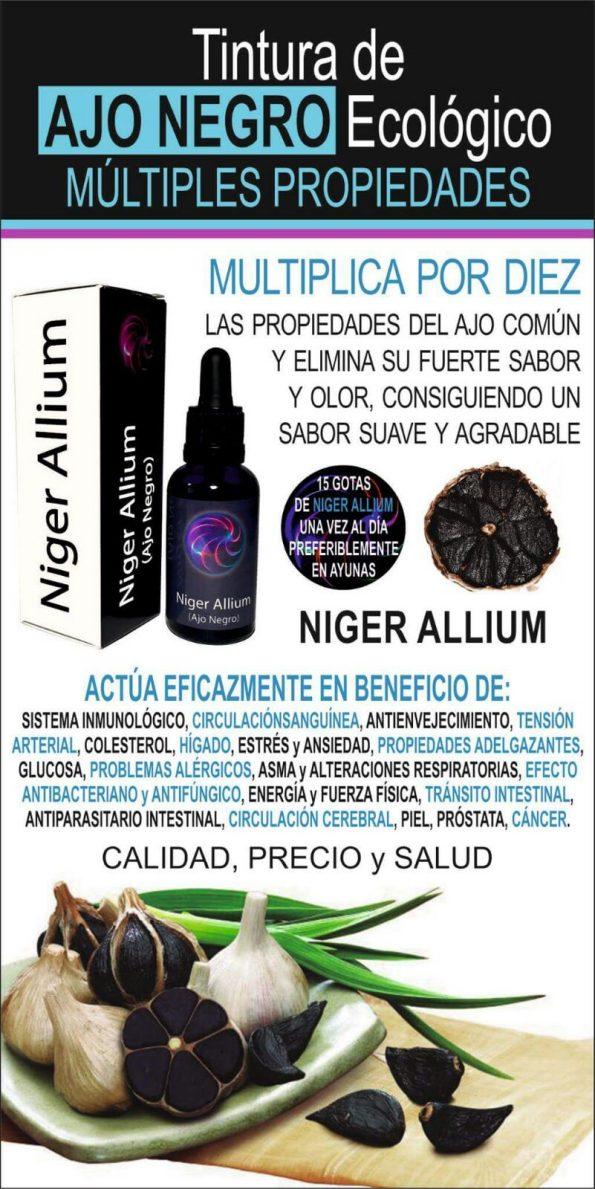 Niger Allium
