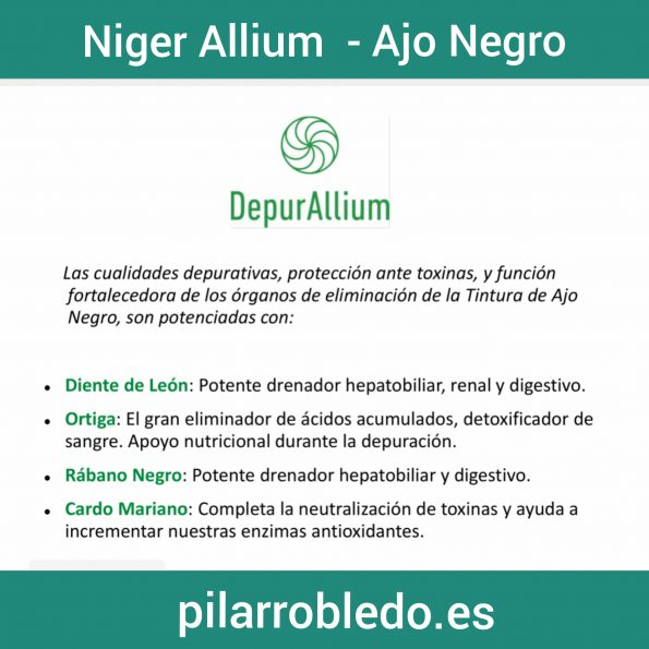 Niger Allium Depur