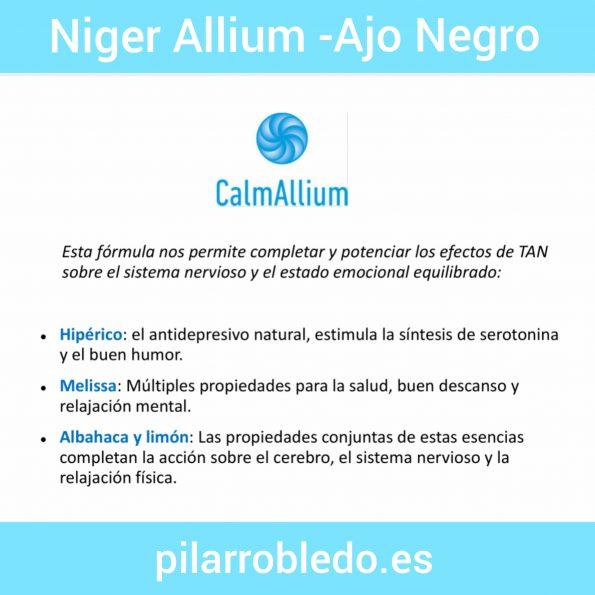Niger Allium Calm